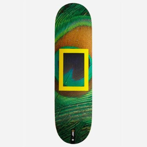 national geographic peacock skateboard deck 8 0